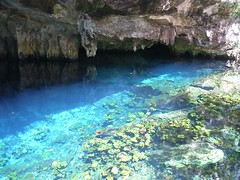 gran cenote, cenotes de tulum