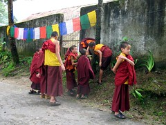 Monks (Linda DV) Tags: travel people india cute barn children geotagged kid child religion young buddhism kind criana himalaya enfant nio sikkim 2007 dziecko bambino gangtok    lapsi copil dijete  dt  encheymonastery   lindadevolder
