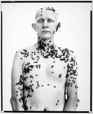 Ronald Fischer, beekeeper