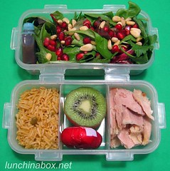 Pomegranate salad bento lunch