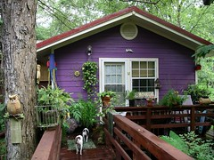 guest cottage in back of house. (juliealicea1947) Tags: louisiana purple cottage purplehouse