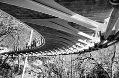 Liberty Bridge Underneath B&W