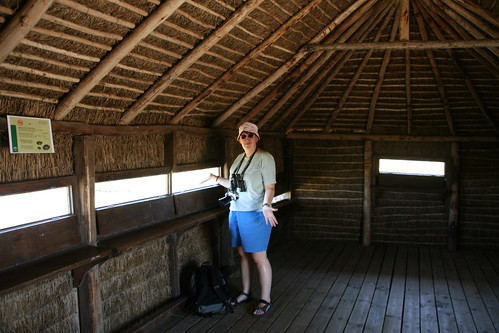 Bird hide @ Doñana National Park