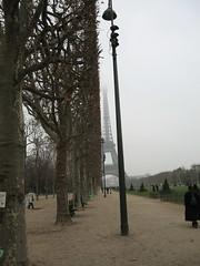 Parigi - Esplanade des Invalides (Sebastiano Di Rosa) Tags: trees paris france fog alberi europa europe toureiffel torreeiffel nebbia palo francia lampione parigi viale towereiffel esplanadedesinvalides filare broncobilly85
