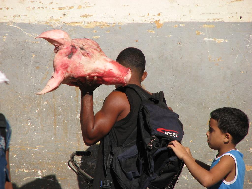 Cuba: fotos del acontecer diario 2544714064_676e81cb17_b