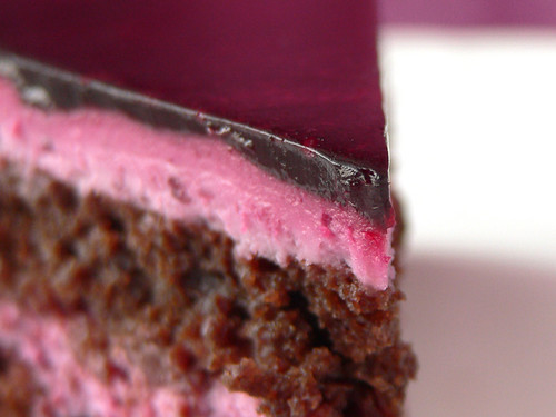 Chocolate layer cake with elderberries from hedonistin