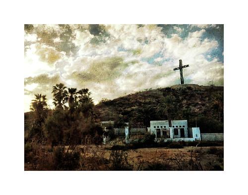 Puerto Los Cabos Cross