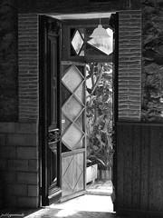 Salgamos fuera (Pablo Germade) Tags: door cactus blackandwhite bw muro byn blancoynegro luz sunshine wall pared puerta soleado luznatural panasonicdmcl1 leicadvarioelmarit leicadasph pablogermade