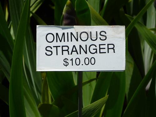 Ominous Stranger