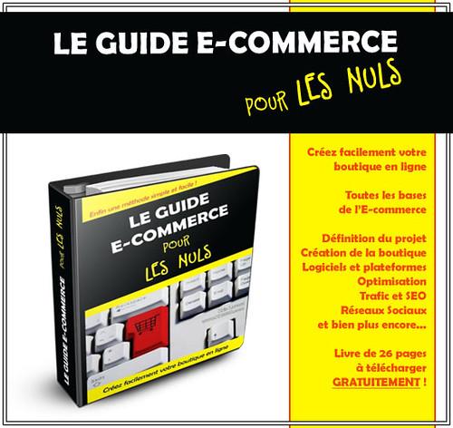 Le Guide E-commerce pour les Nuls : Apprendre gratuitement à créer sa boutique en ligne