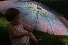 Baby with Umbrella 1 (nasu1) Tags: portrait baby umbrella diffusedlight