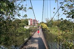 峨眉湖吊橋20
