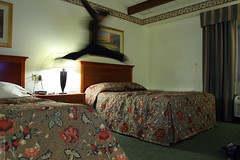 warmup (wmliu) Tags: people usa girl kids hotel us jump vermont beds rutland 1740mm canonef1740mmf4lusm vt meimei redroofinn wmliu