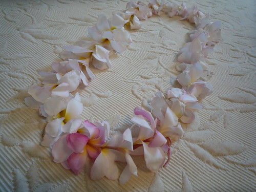 Flower Lei by Spotted drum ♥.