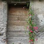 Porte fleurie thumbnail