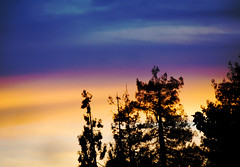sunset 20150210