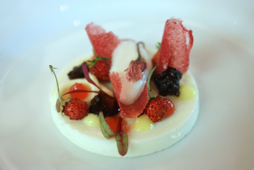 Sakura Cream, Black Okinawa Sugar, Alpine Strawberry, Cherry Blossom-Yogurt Sorbet