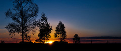 Et le jour se lève (Claudia Oseki) Tags: road blue brazil sky sun tree nature sunshine brasília brasil landscape bush shine paisagem céu goiânia goiás silhueta silhuette flickraward mygearandme