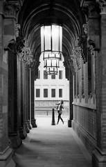 St. Pancras Entrance (009) (swh) Tags: leica city bw brick london girl monochrome station person 50mm lights dof entrance summicron lamps pillars stpancras ilford m6 bollard 2011 xp2s