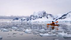 Antarctica (Dan Cosmin) Tags: blue sun ice water landscape penguin penguins kayak outdoor south antarctica seal kayaking whale iceberg