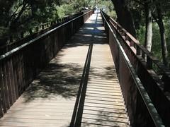 Anglų lietuvių žodynas. Žodis walkway reiškia n (ypač amer.) pėsčiųjų takas; alėja lietuviškai.