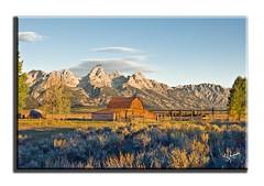 Barn on Mormon Row (Apothegary) Tags: mountains barn landscape nationalpark mormon grandteton mormonbarn
