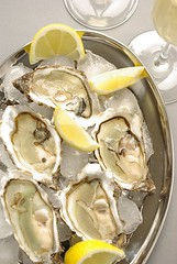 Oysters (3/3) (Thorsten (TK)) Tags: food ice yellow lemon raw fance starter champagne seafood oysters tray presentation appetizer oyster auster foodphotography austern foodpresentation foodstyling thorstenkraska