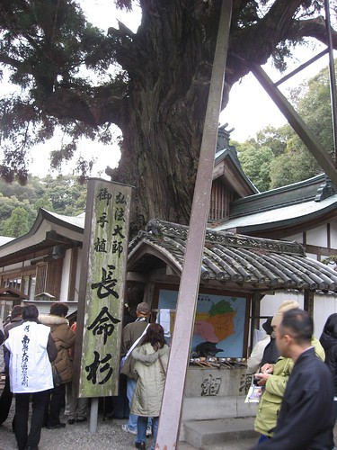 Ohenro(in Gokurakuji Temple,Shikoku,Japan)