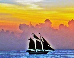 Key West Sunset (Blooms n' Twigs) Tags: ocean sunset water sailboat sailing florida sails keywest naturesfinest colorphotoaward aplusphoto ultimateshot diamondclassphotographer brillianteyejewel colourartaward llovemypic
