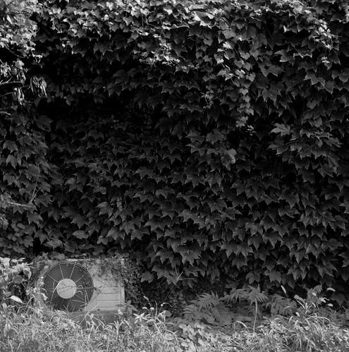 埋もれる室外機