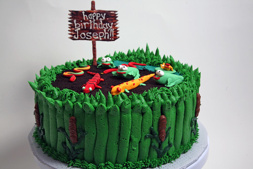 joseph's cake. Originally uploaded by the schneider clan