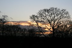 Nantwich (annick777 aka elia grace) Tags: uk sunset england tree silhouette soleil coucher angleterre arbre nantwich fpc mywinners