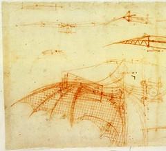 F70r-B- Diseño de un ala para volar (parte de imagen)-Biblioteca Ambrosiana