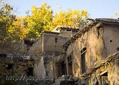 autumn-mohsen moossavi (8) (Mohsen MoossaviZadeh) Tags: iran  mashhad khorasan  torghabeh