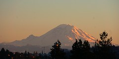 Mt Rainier alpenglow (tsibley) Tags: alpenglow mountain mtrainier seattle sunset volcano