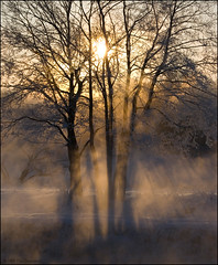 Winter dawn. (Yuri Degtyarev) Tags: winter lens dawn sony yuri 100 kit alpha sal a100 1870 degtyarev alpha100 sal1870 18703556