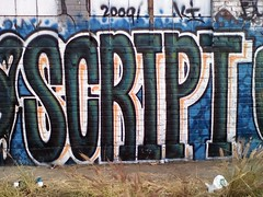 SCRIPT (GhoDilated) Tags: graffiti script ki voila roes bloch