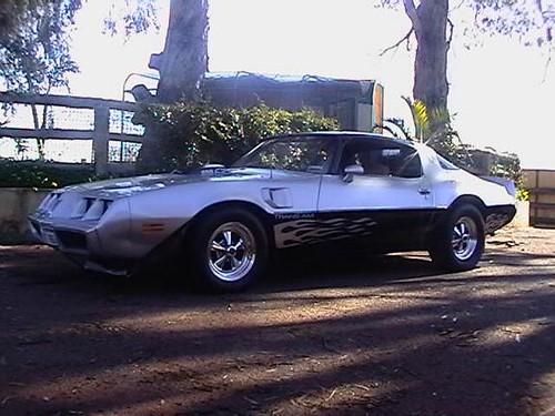 My 1980 Trans Am Firebird