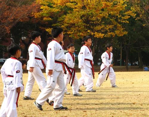 Taekwondo in the Park by Xelita.