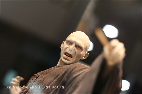 Gentle Giant Voldemort by artist.proof.