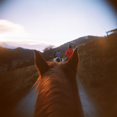 Ride'em baby!!! (almogaver) Tags: horse 120 holga catalunya agfa rideem 100asa cavall optima holga120cfn agfaoptima cfn galop almogaver camprodón capdany2007 cavalgant agfaoptima100asa davidroca
