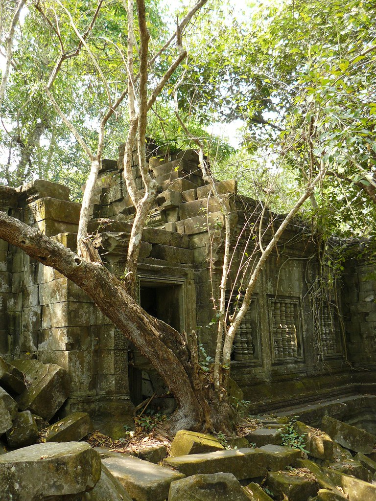 Cambodge - Angkor #212