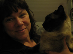 85.366   he (obviously) can't get enough of me (emdot) Tags: cat bodylanguage siamese both chapin straightarm doesntliketobeheldatall softestcatintheworld andinthewest inthewestandintheworld