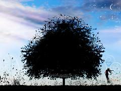 I could sing of Your love forever (f. prestes) Tags: flowers sky plants moon flores tree girl silhouette azul clouds contrast butterfly hearts stars jump jumping plantas cs2 god magic faith joy dream felicidade manipulation estrelas brush cu christian coraes contraste nuvens corao lua dreamy saltando alegria swirls unreal rvore pulo vector sonho f hapiness mgico borboletas delirious deus vetor silhueta manipulao irreal pulando sonhar sonhadora mgica vetorizado
