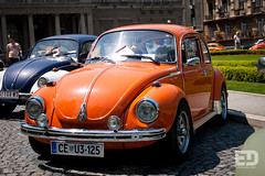 """Belgrade Bugs • <a style=""""font-size:0.8em;"""" href=""""http://www.flickr.com/photos/54523206@N03/5746007712/"""" target=""""_blank"""">View on Flickr</a>"""