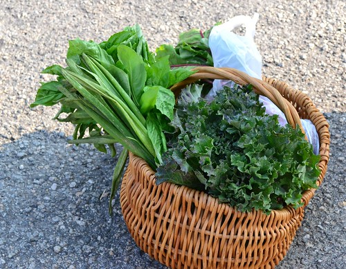 Greens Basket