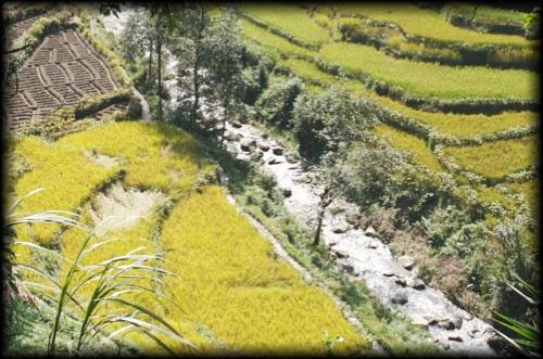 2007-10-06_04-24-00_Kathmandu_Nepal