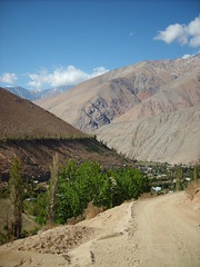 Valle de Elqui / Elqui Valley (Cami : Happiness is contagious) Tags: chile trees sky naturaleza mountain tree nature clouds landscape arbol view paisaje cielo nubes vista montaas laserena elqui valledelelqui piscoelqui elquivalley
