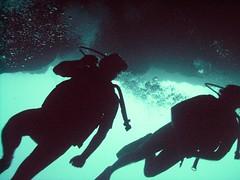 PICT0029 (JoseQ) Tags: blue mar hole great tiburones buceo caribe submarinismo tiburón