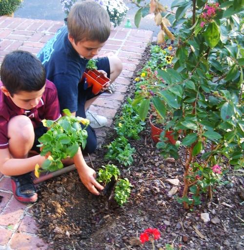 garden.boys